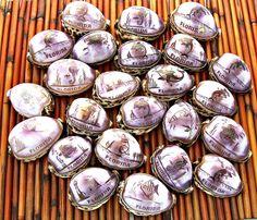 WHOLESALE 200 Pc Lots Decorative Florida Designs Etched Tiger Cowrie Sea Shells