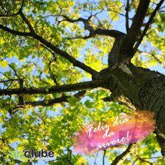 Hoje é dia da árvore! E as árvores, como toda a natureza, significam vida! Simples assim. Preservar uma árvore é preservar a vida!
