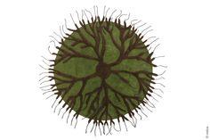 Matali Crasset   Roots: Love this rug!