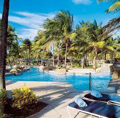 palm island st vincent -