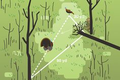 Illustration by L-DOPAWith a hen decoy, a mouth call, and his bow, upstate New York outfitter Chris Davanzo has stuck a pile of longbeards without a ground blind. To draw and shoot undetected, he sets up in a triangle formation. Here's how he does it.