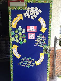 Life cycle of a frog!   What a great door!!