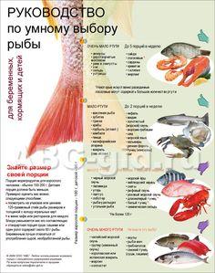 Руководство по выбору рыбы (содержание в рыбе ртути)