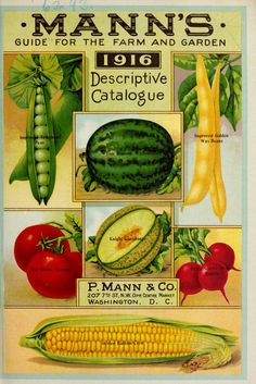 Mann's guide for the farm and garden : 1916