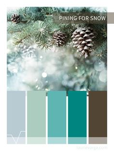Pining for snow, cool tone winter color palette.