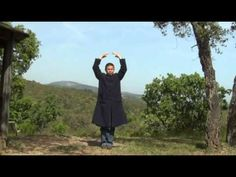 Zhi neng qi gong level 1 - YouTube
