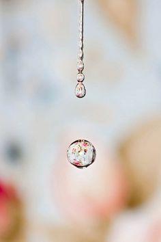 Dica para fotografia macro: gotas de água | Amor Pela Fotografia