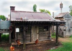 rain on chicken coop roof.love that coop! Chicken Home, Chicken Runs, Chicken Lady, Chicken Ideas, Keeping Chickens, Raising Chickens, Chicken Coop Designs, Chicken Coops, Hobby Farms