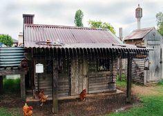 rain on chicken coop roof