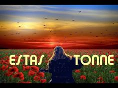 🌷 Magical Nature 🌷 🎸 by Estas Tonne ✨ (Andacas Festival, Portugal Estas Tonne, Book Of Life, Neon Signs, Birds, Nature, Flowers, Movie Posters, Beautiful, Art