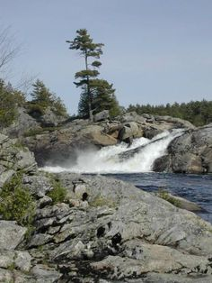 Moon Falls, South of Parry Sound, Ontario, Canada. i have fished there for 30 years ! Landscape Photos, Landscape Photography, Travel Photography, Quebec, Ontario Cottages, Canada Landscape, Ontario Travel, Canada Travel, Nature Pictures