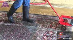 Area Rug Cleaning Oklahoma  Oriental Area Rug Cleaning Oklahoma Area Rug Cleaning Oklahoma Rug Cleaning Oklahoma Area Rug Cleaning Tips Oklahoma Area Rug Cleaning Expert Oklahoma Area Rug Cleaning Specialist Oklahoma