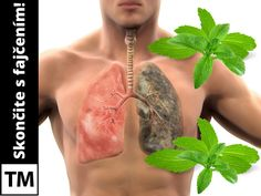skončite s fajčením