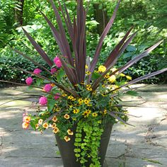 A nice balance of different types of plants for container gardening  http://www.fernlea.com/containergardens.html