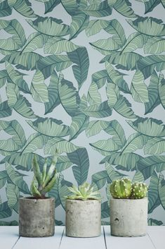 Create a unique & botanical interior with our trendy pink & green tropical leaf wallpaper mural.