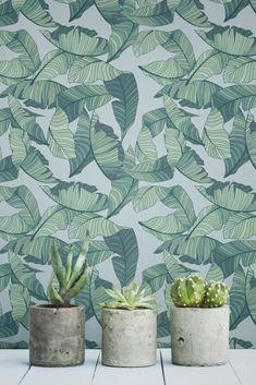 Wallpaper Love: Trop