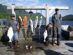 Yes Bay Lodge - SE Alaska Fishing Reports Bay Lodge, Alaska Fishing, Fishing Report