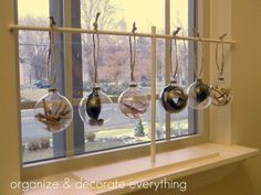 Filled Ornaments- With elements from nature ....  can use feathers, twigs, or pine needles, holly leaves!