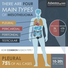 Mesothelioma - What is it? - The Chronically Awesome Foundation