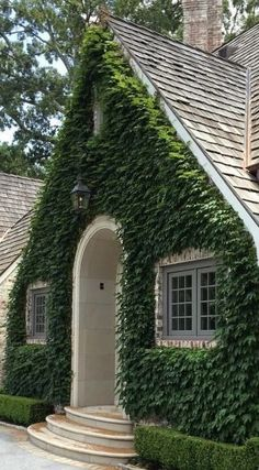 Vine covered with clipped hedges, arched doorway