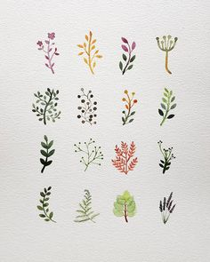 watercolor The post watercolor appeared first on Blumen ideen. Watercolor Cards, Watercolor Illustration, Illustration Flower, Watercolor Tattoos, Watercolor Artists, Watercolor Clipart, Herbs Illustration, Flower Illustrations, Watercolor Design