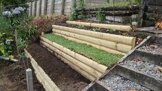 'Instant' lawn relocated from near water feature where decorative grasses are being planted.