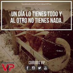 Así que abusados.!  ____________________ #teamcorridosvip #corridosvip #corridosybanda #corridos #quotes #regionalmexicano #frasesvip #promotion #promo #corridosgram - http://ift.tt/1HQJd81