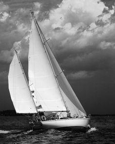 Black and White Photography   Marine Photography!