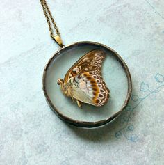 Large Blue Butterfly Soldered Necklace Terrarium by WaspishWears