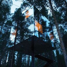 """by ted: Treehouses aren't just for kids. The Treehotel in Sweden, designed by Tham and Videgård Arkitekter, is a perfect 4-meter cube large enough for two people. Its mirrored glass exterior lets it disappear into the forest, but its transparent ultraviolet coating helps birds avoid flying into it accidentally. See more incredible buildings that cooperate with nature in our newest #TEDBook, """"The Future of Architecture in 100 Buildings,"""" available now at: go.ted.com/architecturebook Photo by…"""