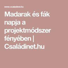 Madarak és fák napja a projektmódszer fényében | Családinet.hu