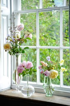 Gardening Roses Tips for cutting garden roses to bring them in the house - FineGardening - Tips for a cutting garden of roses from David Austin Roses senior rosarian, Michael Marriott. Learn the right way to care for cut roses to keep them fresh longer. Arrangements Ikebana, Floral Arrangements, Rosas David Austin, Fresh Flowers, Beautiful Flowers, Farmhouse Vases, Rustic Vases, Vase Transparent, Old Vases