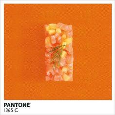 Pantone 1365