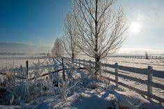 Winter morning in Heber Valley, Utah