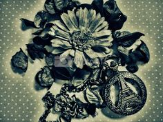 Flower with French Pocket Watch Old by danubia at PhotoBtc.com