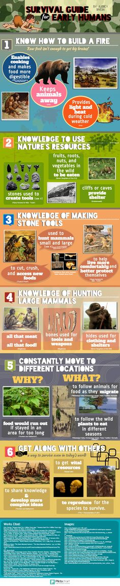 Early Human Survival Guide | #infographics created in #free @Piktochart #Infographic Editor at www.piktochart.com