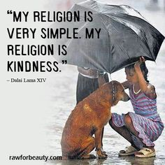 God rewards those who are kind to our four legged critters!