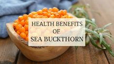 Curious about the health benefits of sea buckthorn? Watch this video to find out more. Skin Rash, Health Benefits, Cantaloupe, How To Find Out, Berries, Fruit, Sea, Watch, Food