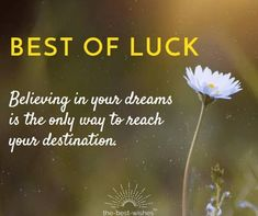 Looking for All the Best Wishes and Good Luck Quotes, Messages and Sayings? Here's our collection of Best Well Wishes to wish them luck for future endeavors. Exam Good Luck Quotes, Exam Wishes Good Luck, Best Wishes For Exam, Wishing Good Luck Quotes, Good Wishes Quotes, All The Best Wishes, Goodbye Quotes, Exam Quotes, Wish Quotes
