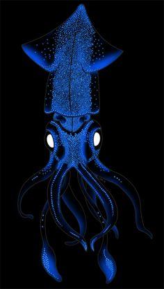 trans-ideal: Jellyfish | trans-ideal | Jellyfish and ...
