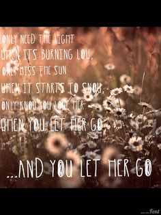 #passenger let her go