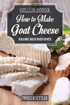 How to Make Goat Cheese Goat Cheese Recipes [Chapter 10] Raising Goats | Try Many Types Of Farming For You And Your Homestead