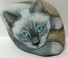 Siamese+or+Ragdoll+Cat+Art+Rock+Original+by+Artrox+