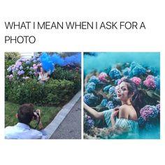Tips For Taking Digital Photography Royal Photography, Digital Photography, Amazing Photography, Funny Instagram Posts, Funny Posts, Instagram Images, Taking Pictures, Funny Pictures, King Meme
