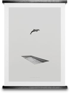 DOLPHIN & POOL BY GREG EASON. Buy print at  https://paper-collective.com/product/dolphin_pool/ #papercollective #art #illustration #drawing #nature #monochrome #grey #print #poster #posterdesign #design #interior #home #decor #homedecor #wallart #artprint