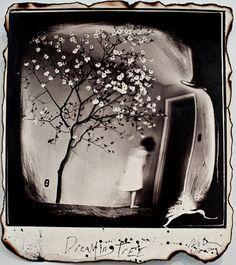Michael Donnor,  Burned negative