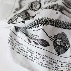 Fabrics & Linens: Les Squelettes Dish Towel by Bon Matin (skeletons)