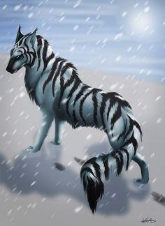 Zebra wolf in the snow.