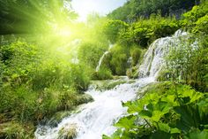 Image: Beautiful nature landscape 01 hd pictures Free stock photos in . Free Stock Photos, Free Photos, Nature Images Download, Nature Verte, 1366x768 Wallpaper, Waterfall Photo, Waterfall Scenery, Forest Waterfall, Nature Landscape