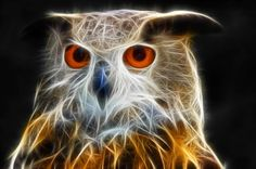 Fractal Owl Art Print for sale. Glowing bird full of energy, fractalized Eagle Owl. Available as poster, framed print, metal, acrylic, wood or canvas print. Art for your Home Decor and Interior Design by Matthias Hauser.